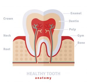 If you have enamel erosion, this can lead to serious dental issues. Thankfully though, New Image Dentistry, your dentist in San Antonio, can help.